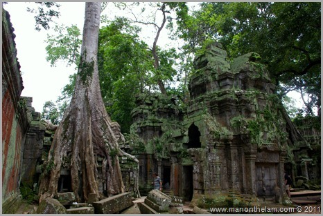 Ta Prohm Temple with support beam