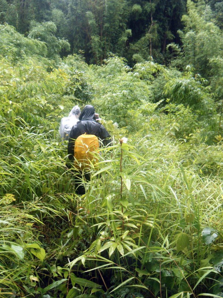 hill tribe trek in northern Thailand