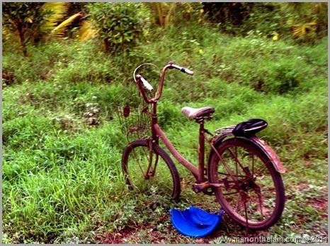 LocalGguiding.com Follow Me Bike Tour Bangkok