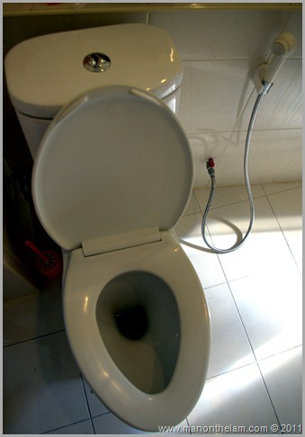 hand held bidet faucet and hose with toilet