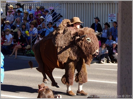 Prince Henry in a Bison costume Best of Travel 2011 Photo