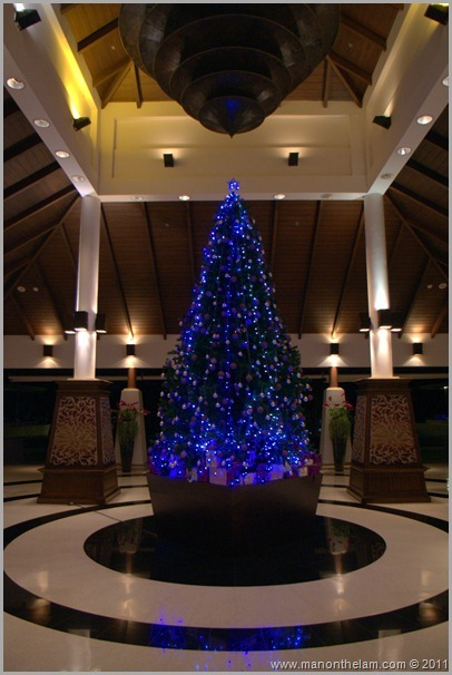 Sheraton Krabi Resort and Spa, Thailand -Christmas tree in lobby Best of Travel 2011 Photo