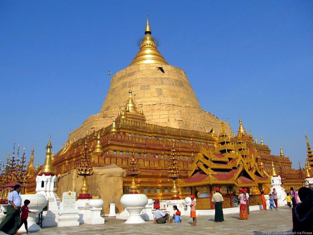 The Buzz on Burma