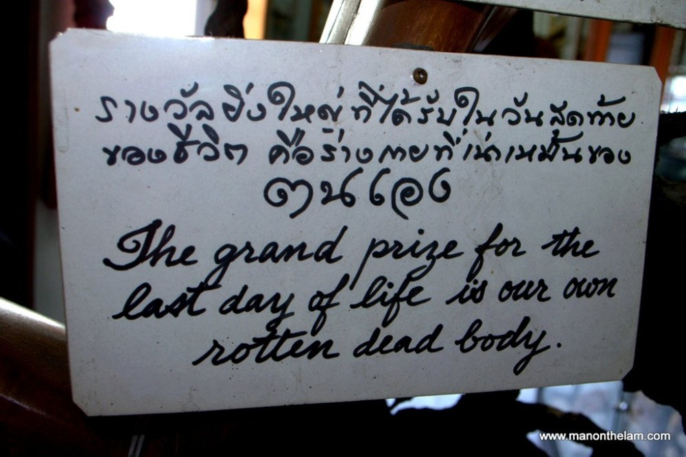 Travel Photo of the Week -- The Sad Truth About Life