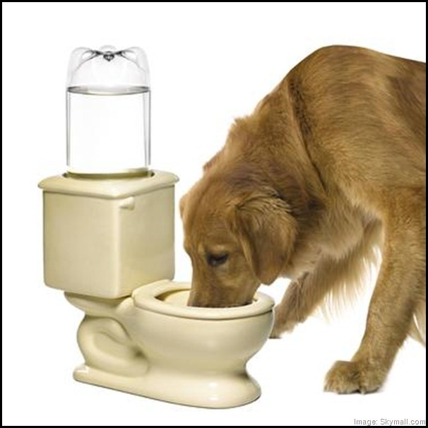Toilet dog and cat water bowl