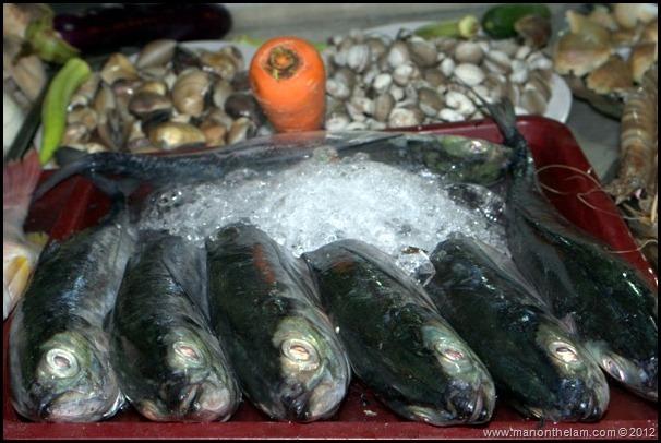 Frozen fish, Dinh Cau Night Market, Phu Quoc Vietnam