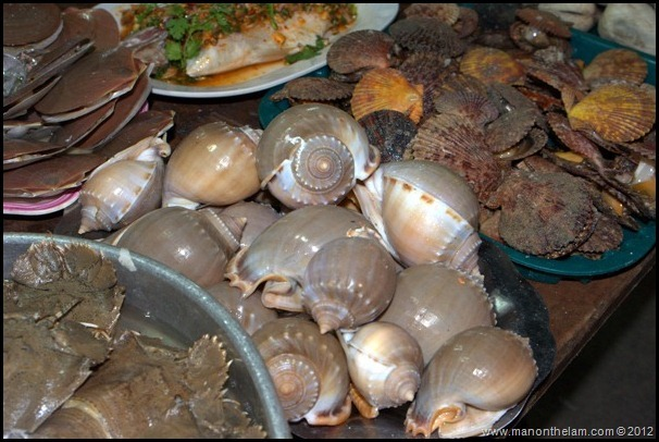 Shells, Clams, Cockles and Mussels for sale, Night Market, Phu Quoc Vietnam