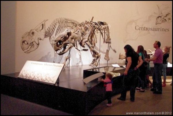 Child on a leash, Royal Tyrell Dinosaur Museum, Drumheller, Alberta CANADA