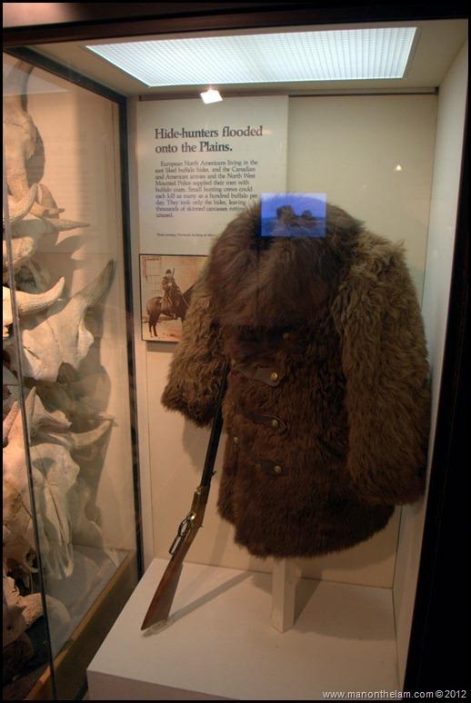 Buffalo fur coat -- Head-Smashed-In Buffalo Jump, Alberta, Canada