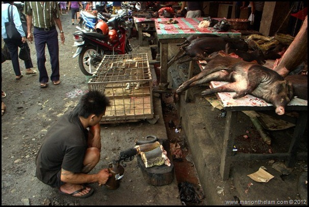 Man with blow torch roasting a snake -- A typical scene at Tomohon Traditional Market, Tomohon, Sulawesi, Indonesia