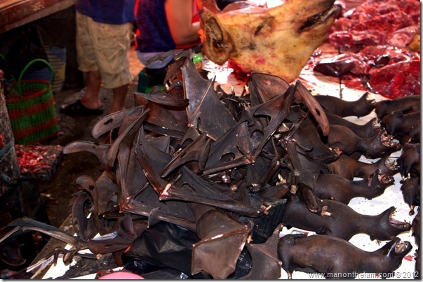 Bats for sale at Tomohon Traditional Market in North Sulawesi, Indonesia