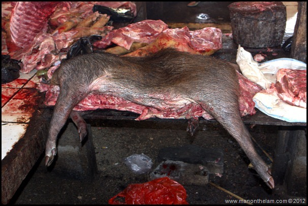 Body of babirusa (wild pig) Tomohon Traditional Market, Tomohon, North Sulawesi, Indonesia