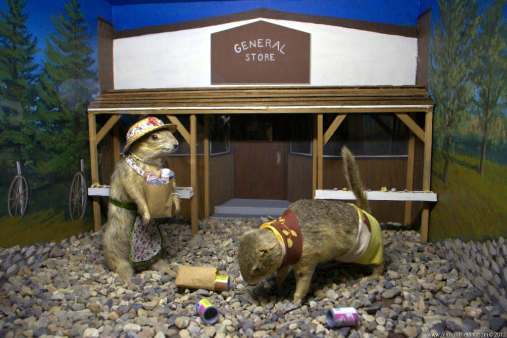 The Amazing Gopher Hole Museum Of Torrington Alberta