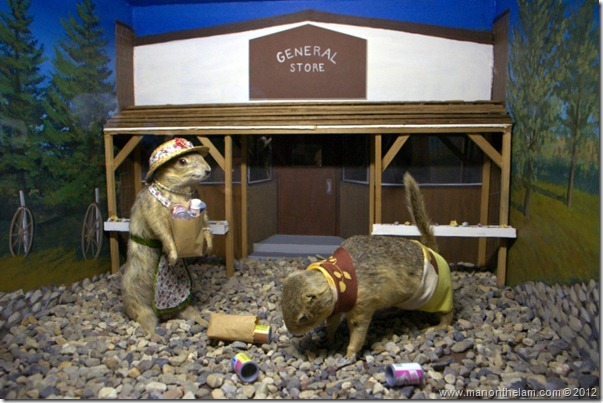 Gopher customers outside General Store stuffed Gopher Hole Museum, Torrington Alberta