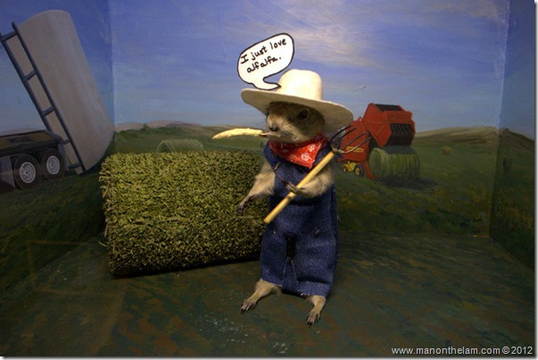 Gopher farmer at Gopher Hole Museum, Torrington Alberta
