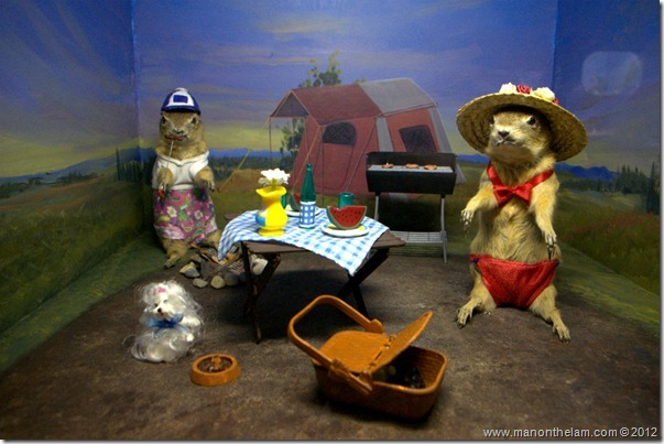 Gopher picnic stuffed gophers at Gopher Hole Museum, Torrington Alberta