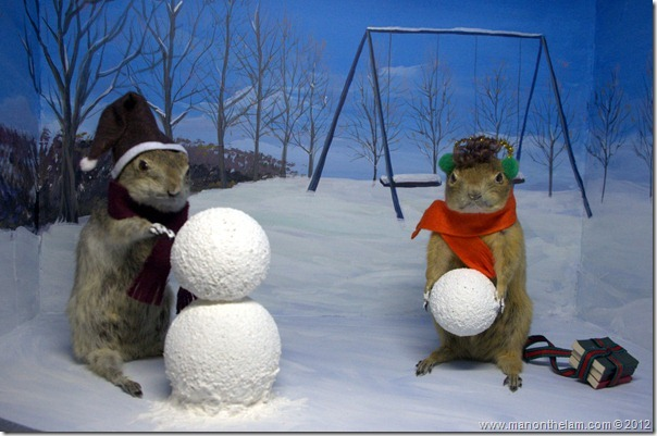 Gophers making a snowman at Gopher Hole Museum, Torrington Alberta
