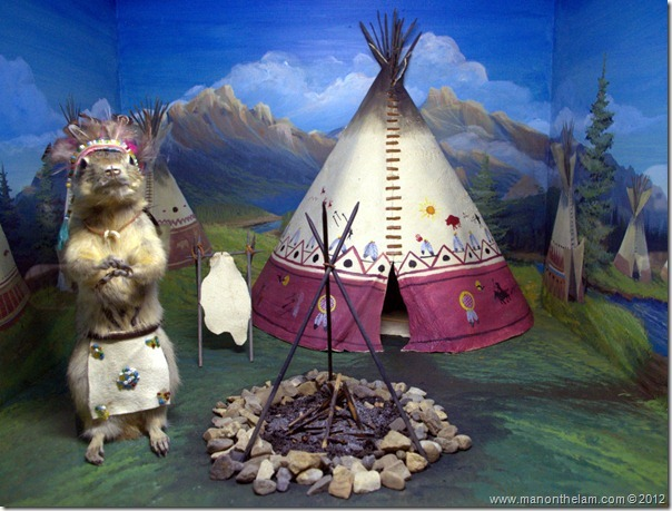 Indian teepee stuffed gopher at Gopher Hole Museum, Torrington Alberta
