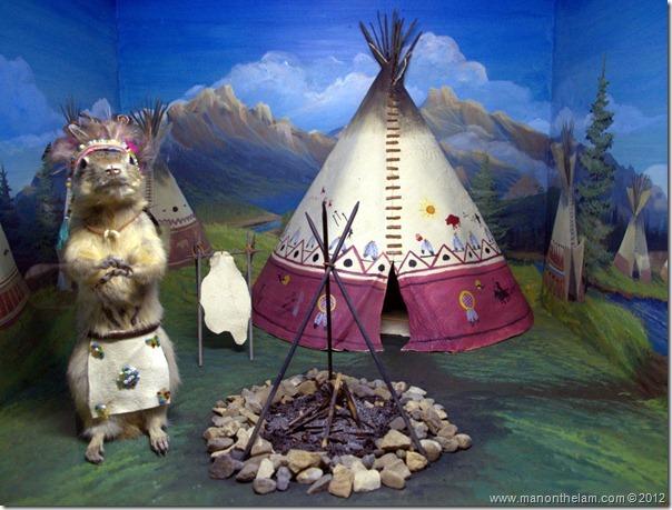 Indian teepee stuffed gopher at Gopher Hole Museum, Torrington Alberta