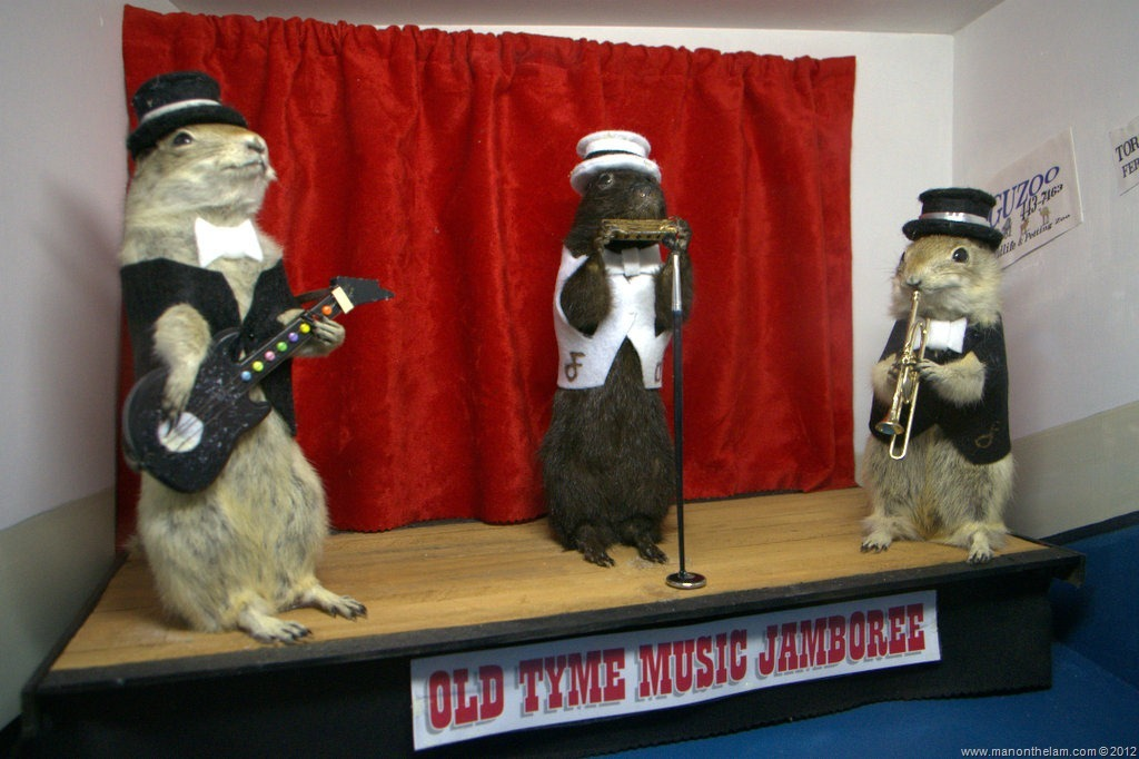 44 Dioramas of Dead Gophers