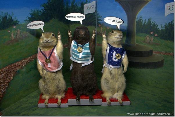 Winners of the gopher Olympics at Gopher Hole Museum, Torrington Alberta