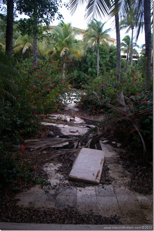overgrown pathway -- Abandoned Beach Resort, Club Maeva Tulum, Xpuha, Riviera Maya, Mexico227