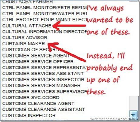 Funny Visa Application Job Titles 23