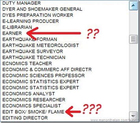 Funny Visa Application Job Titles 30