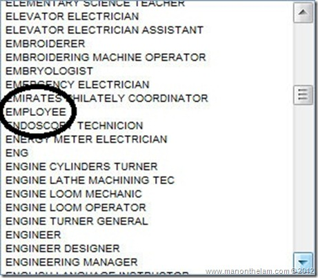 Funny Visa Application Job Titles -- Employee