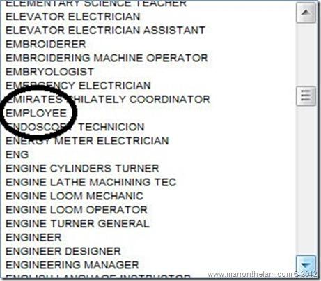 Funny Visa Application Job Titles -- Employee