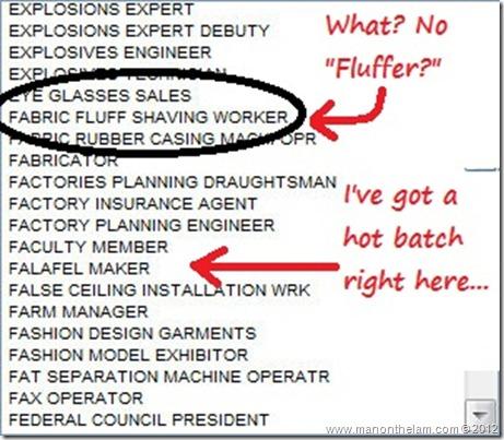 Funny Visa Application Job Titles -- Fabric Fluff Shaving Worker, Falafel Maker