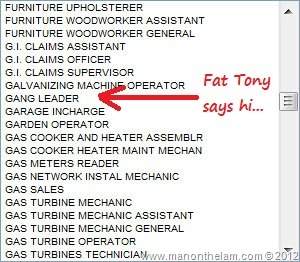 Inadvertently Funny Job Titles on UAE's Visa Application