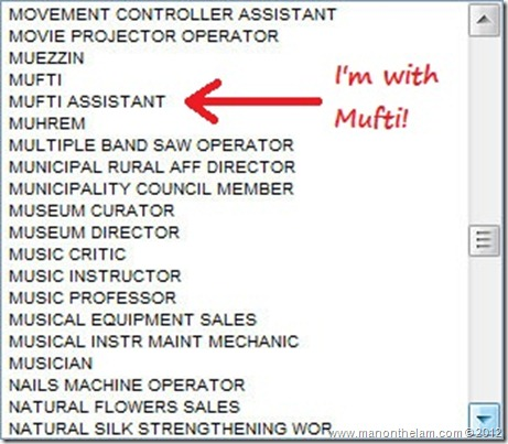 Funny Visa Application Job Titles -- Mufti Assistant