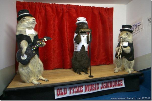 Old Tyme Music Jamboree stuffed gophers at Gopher Hole Museum, Torrington Alberta
