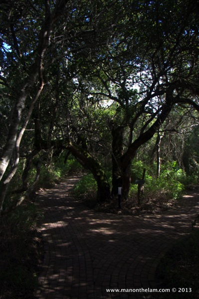Grootbos Private Nature Reserve 168