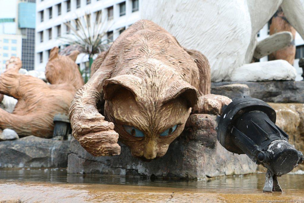 Cat city kuching borneo malaysia 643